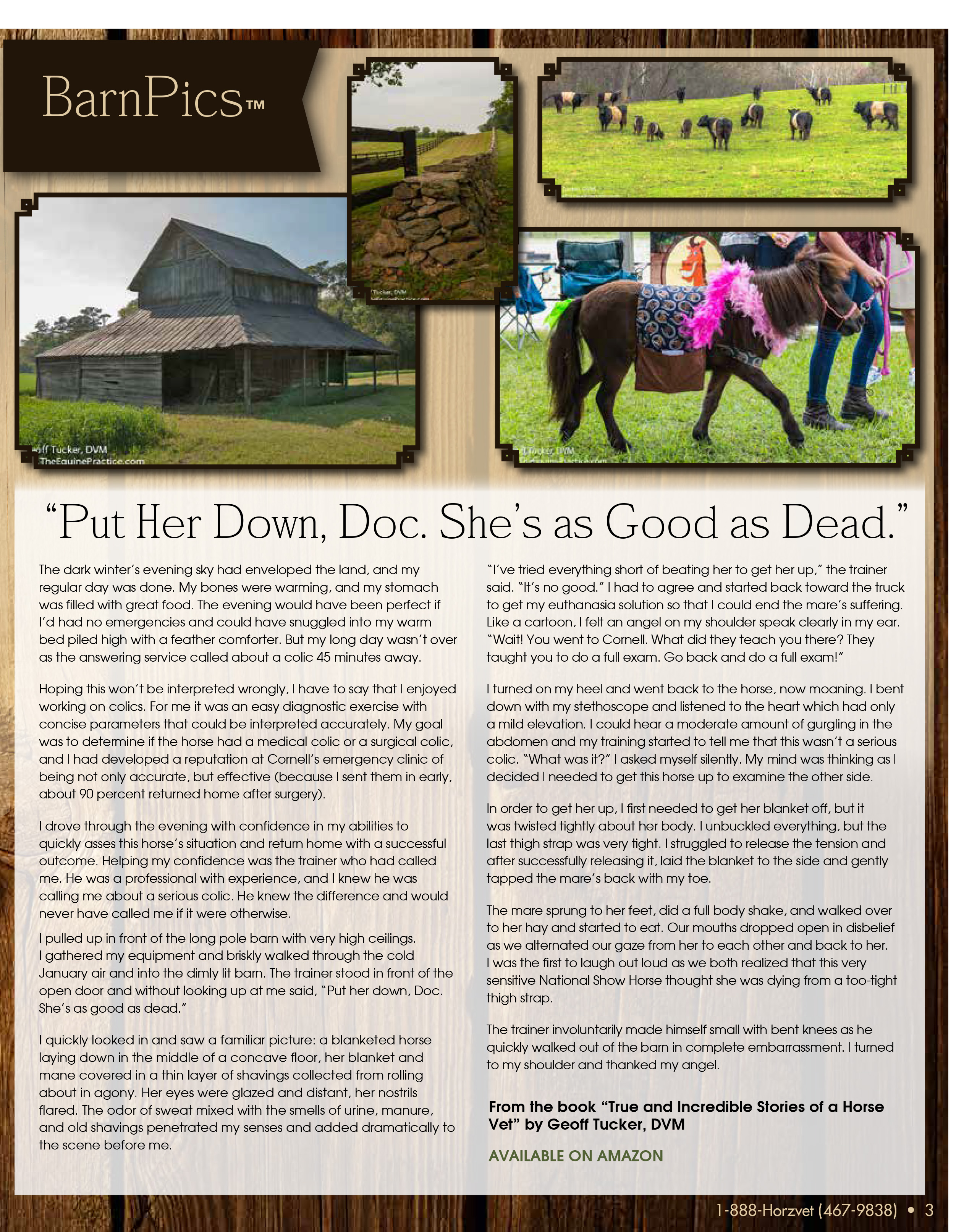 The Equine Practice Rounds_Dec_2015, Page 3, Geoff Tucker DVM, The Equine Practice Inc