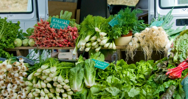 Use these tips to shop at local farm markets this summer