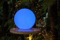 LED GLOBE LIGHTS  The Fairy Light Shop