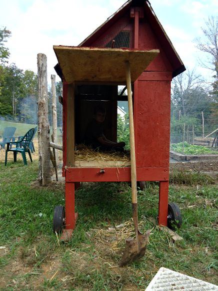 Build your own chicken coop the farm barbie old for Old farm chicken coops