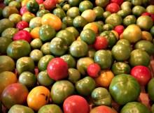 green salsa 2