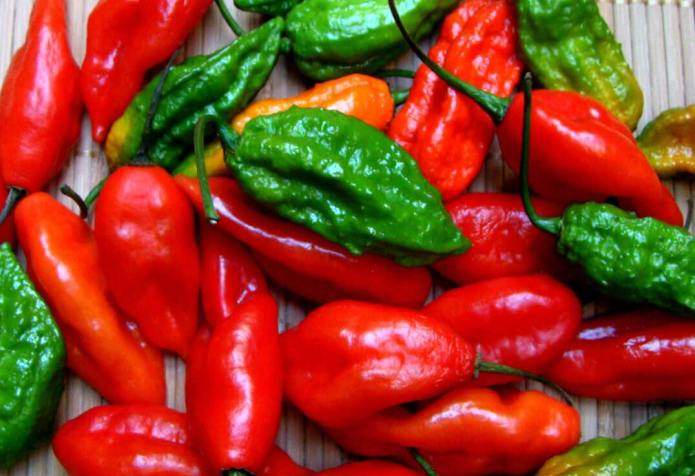 Cooking-With-Ghost-Peppers-1