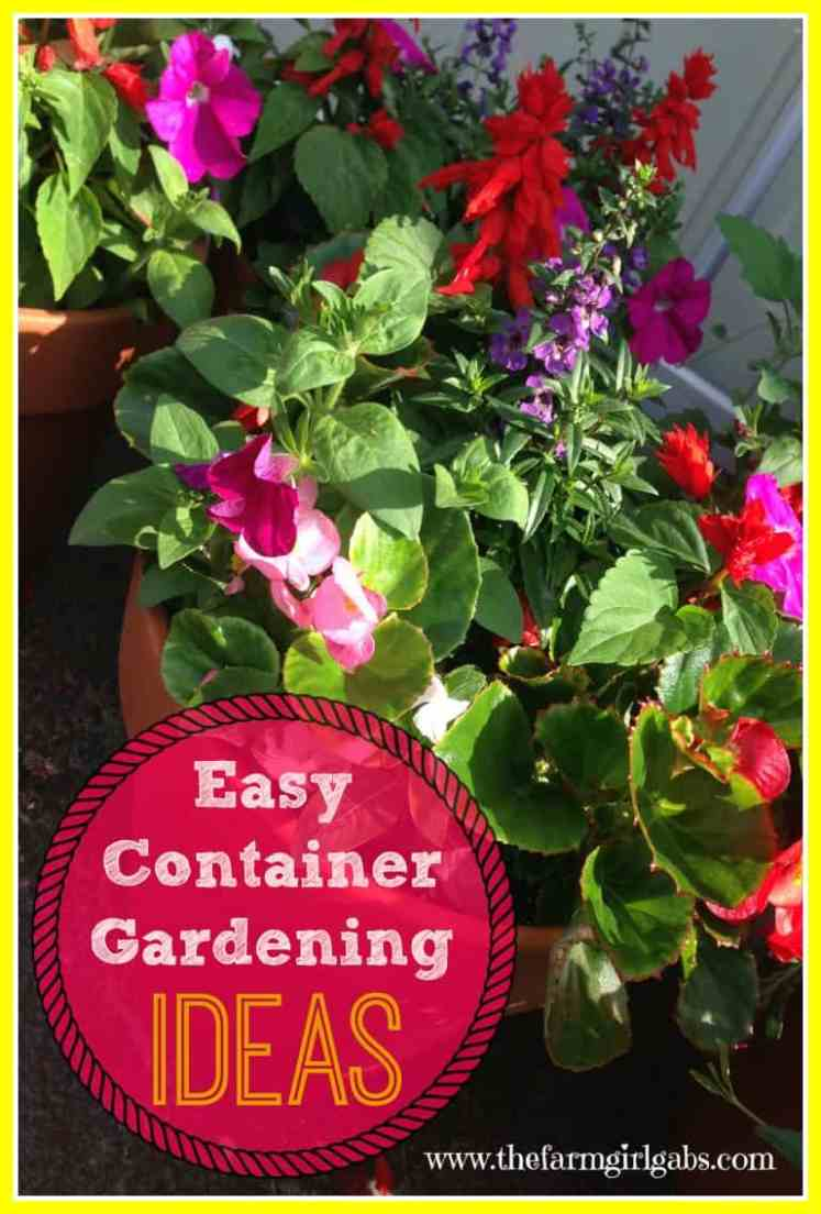 Crazy about container gardening for Easy flower garden ideas