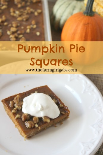 Pumpkin Pie Squares from How Does Your Garden Grow? {www ...