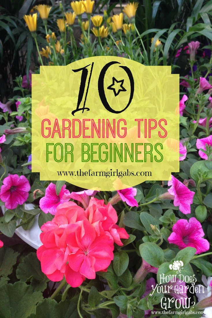 10 gardening tips for beginners the farm girl gabs for Gardening for beginners