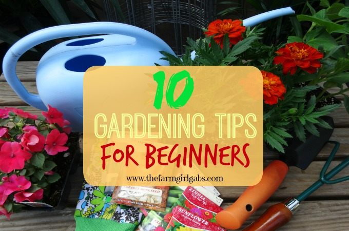 10 gardening tips for beginners how does your garden grow for Gardening for beginners