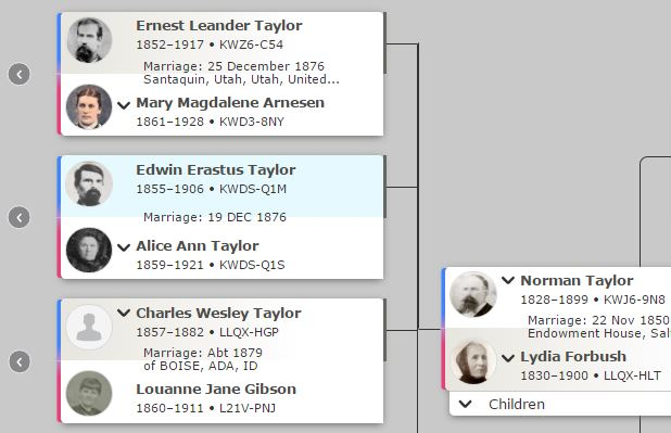 The Family History Guide - family relation tree