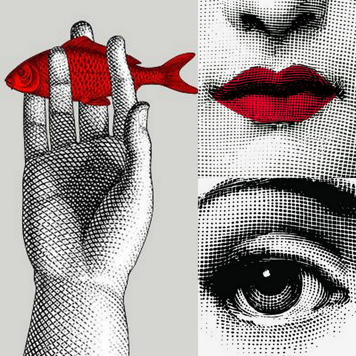 Fornasetti Fornasetti And Julia The Fish Eye