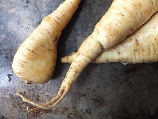 Raw Parsnip Couscous