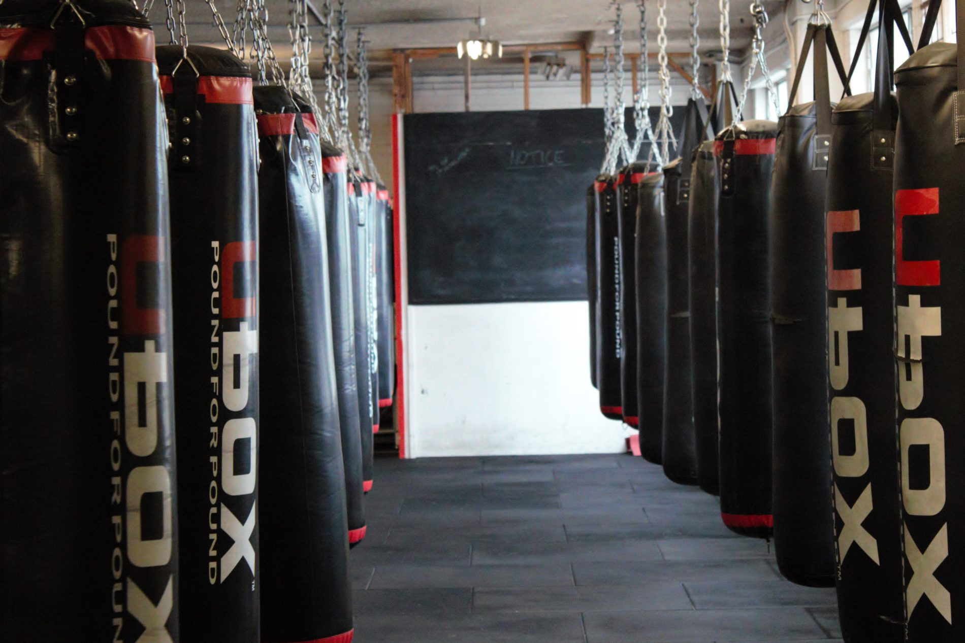 Boxing Brisbane City Brisbane Boxing Mount Gravatt The Fit List