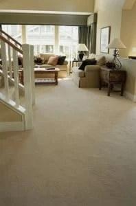 Carpet Westchester NY
