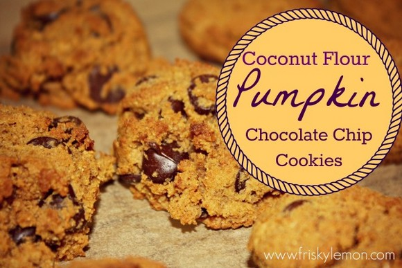 Coconut Flour Pumpkin Chocolate Chip Cookies recipe photo