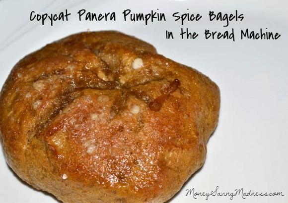 Copycat Panera Bread Pumpkin Spice Bagel recipe photo