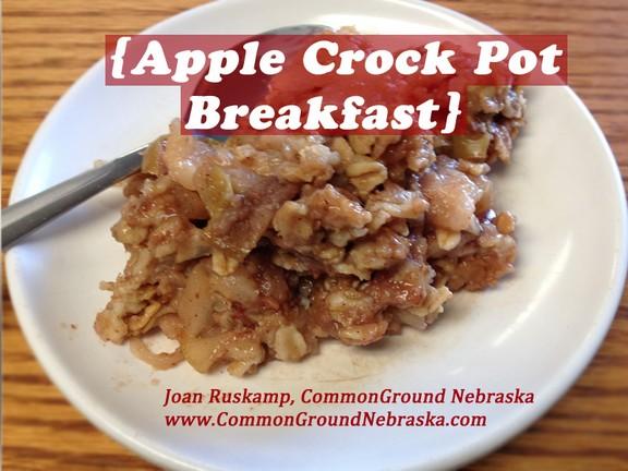Apple Crock Pot Breakfast recipe photo