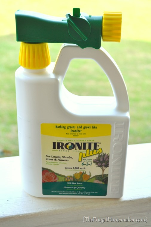 Ironite Spring Fling Must-haves