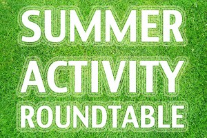 WEBsummer-activity-roundtable
