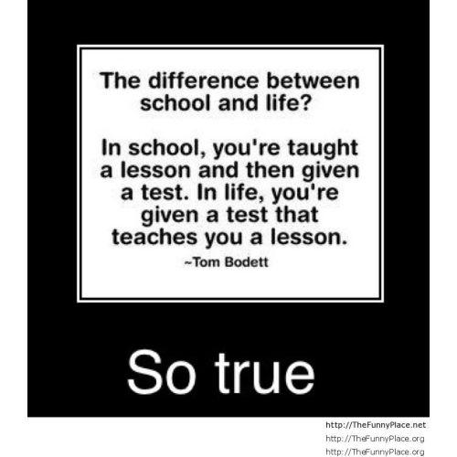 Medium Crop Of Funny School Quotes