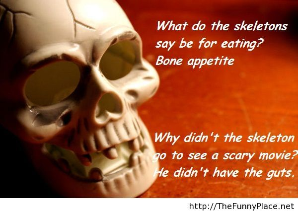 Awesome Cute Skull Wallpapers Funny Halloween Quote Thefunnyplace