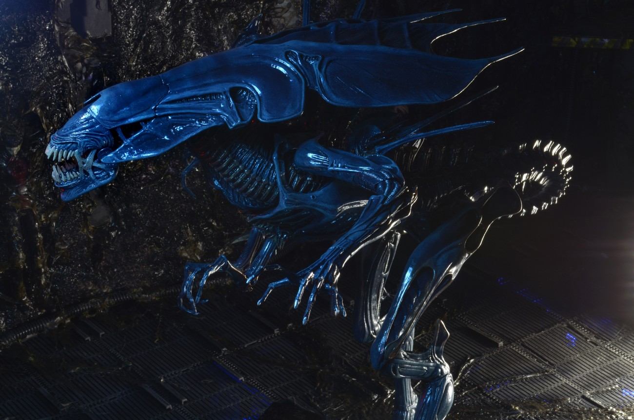 Xenomorph Emperor The gallery for -->...