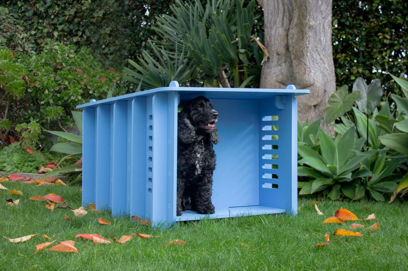 Dog House Barkitecture Designer Flat Pack Dog House