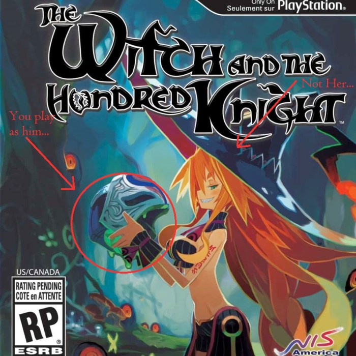2396778 81zg3frulsl. sl1500 1 700x700 The Witch and The Hundred Knight Review | What Did I Just Play?