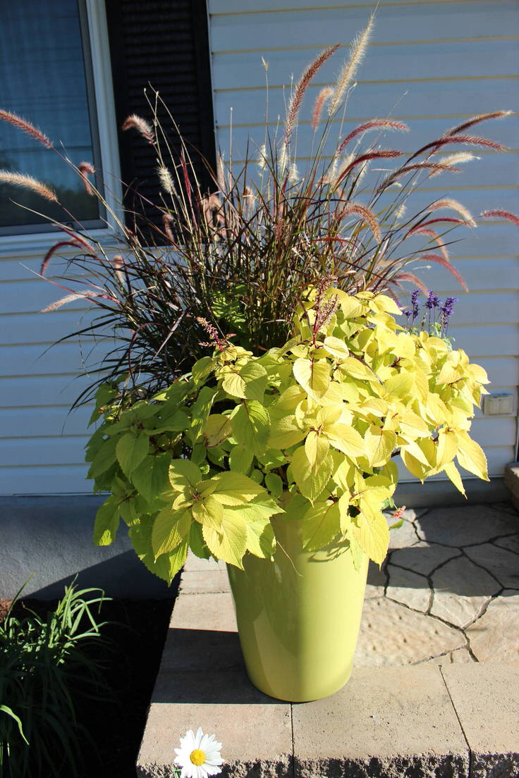 Simple Planters Fall Planter Ideas Wow In 3 Easy Steps The Garden Glove