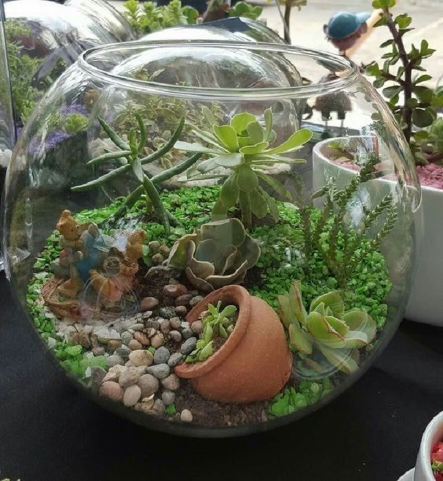 Top 14 Diy Mini Glass Terrarium Ideas Including Special Tips And Arrangment Only For You - Terrarium Glas