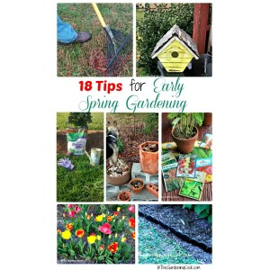 Bodacious Summer Starts Se Early Garden Projectswill Make Sure Early Spring Garden Projects Gardening Cook Garden Landscaping Yarmouth Garden Landscaping Barr Getting A Garden