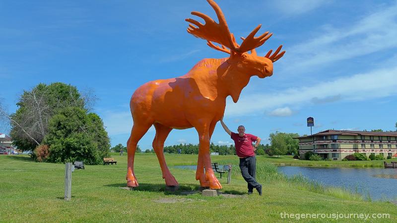 Orange Moose © Paul H. Byerly