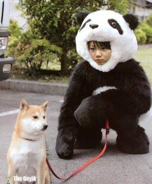 japonların yaptığı komik ve ilginç şeyler 5