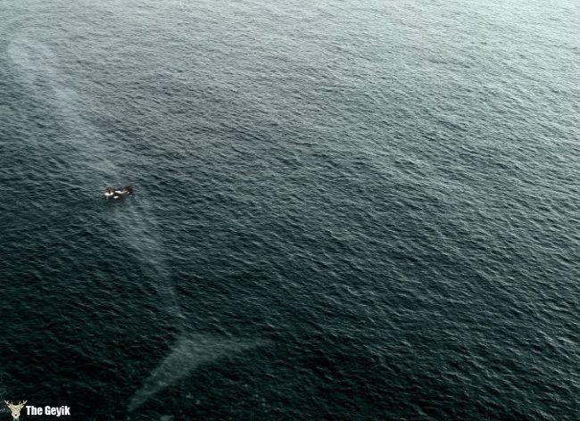 yuzmekten-korkmanizi-saglayacak-deniz-fotograflari-11