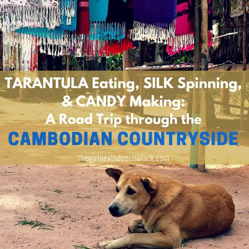 In Cambodia you can dine on deep fried tarantulas, float along the river past houses on stilts, and watch silkworms be turned into beautiful silk | Read more on The Girl Next Door is Black