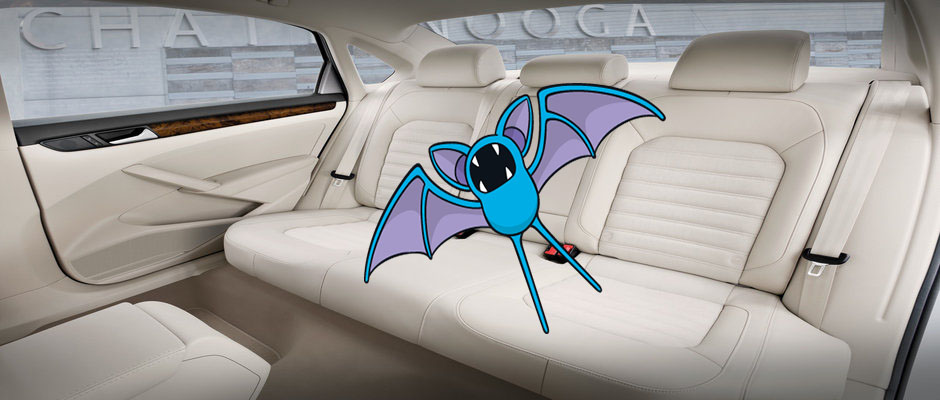 Backseat Zubat