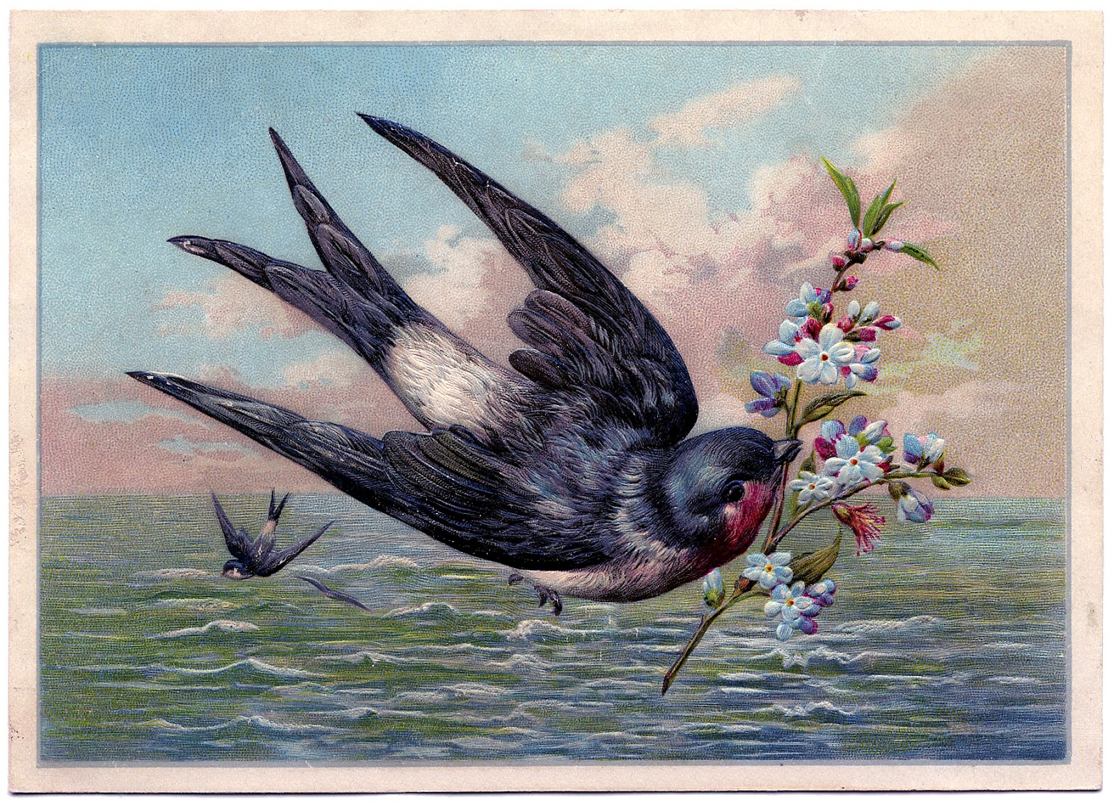 Silhouette Girl Real Wallpaper Vintage Graphic Beautiful Swallow Bird At Sea The