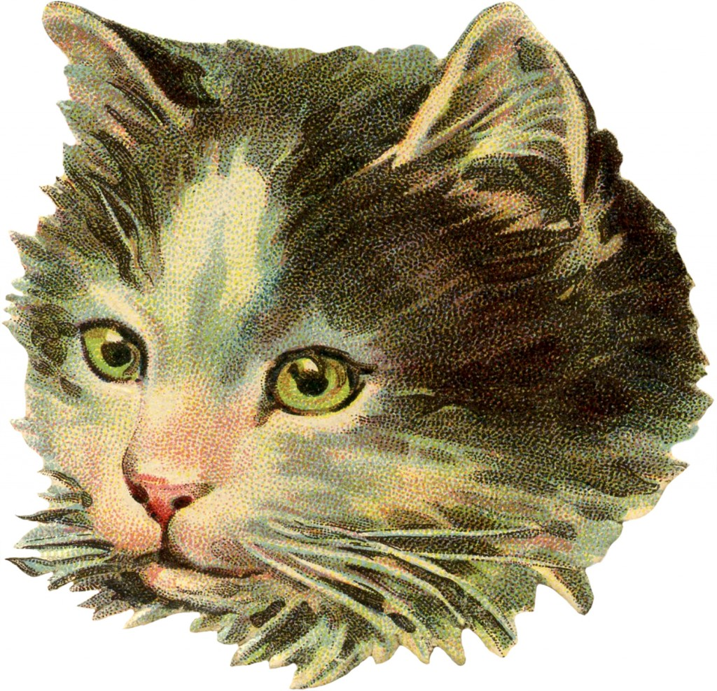 Cute Little Gray Cat For Wallpaper Vintage Cat Illustration The Graphics Fairy
