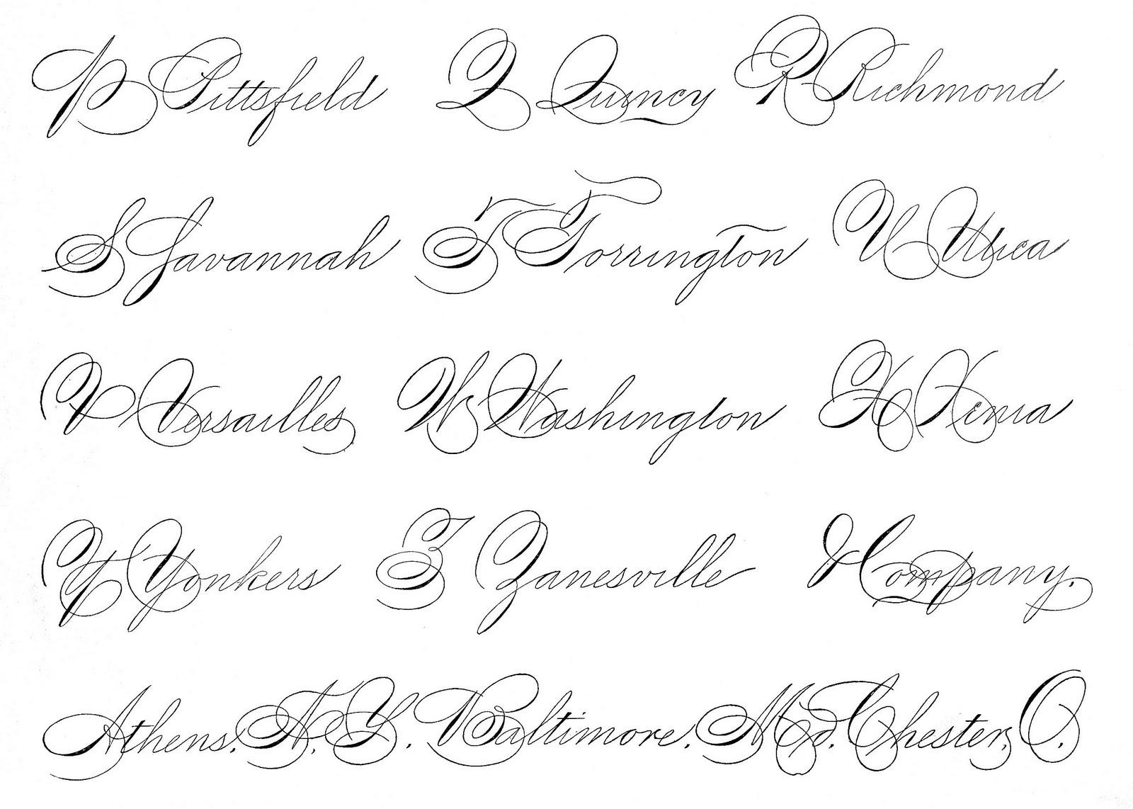 Book Quotes Wallpaper Cursive Spencerian Saturday Pen Flourished Words The Graphics