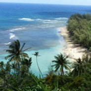 Where to go when you have 7 weeks in Hawaii?