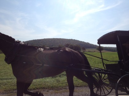 horse and buggy on maine highway