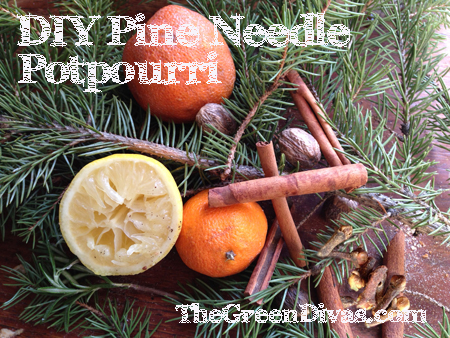 Green Diva Mizar's DIY Pine Needle Potpourri