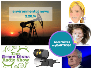 Green Divas myEARTH360 image for 2.20.14