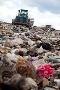wtf environmental news