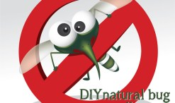 DIY non-toxic bug repellent image on the green divas