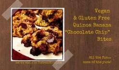 vegan chocolate chip bites (640x410)