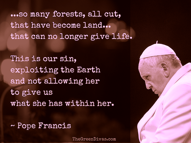 pope francis environment quote