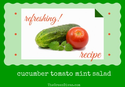 Meatless Monday cucumber tomato salad