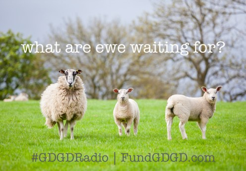 GDGD Radio Network - sheep pitch