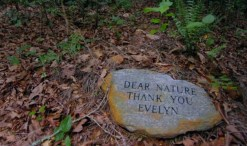 Thank you nature! Going green beyond the grave