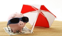 summer pig gets energy saving tips
