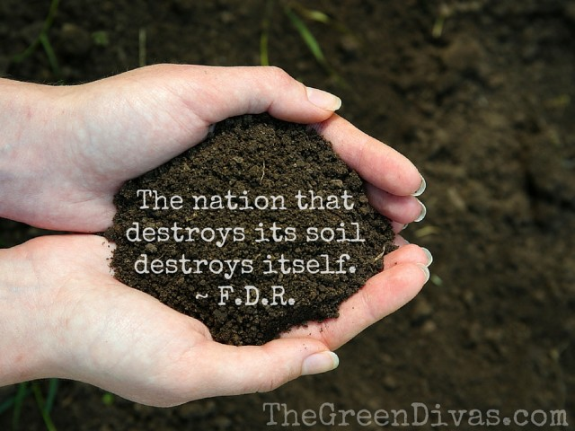 Franklin D. Roosevelt soil quote