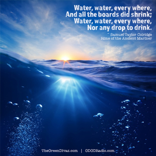 world water day 2016 image on the green divas